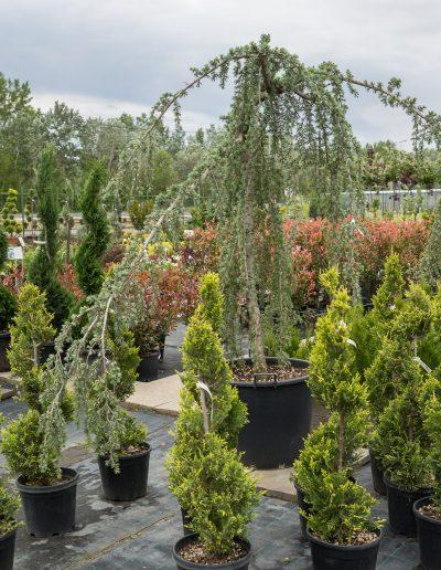 villás kertészeti áruda